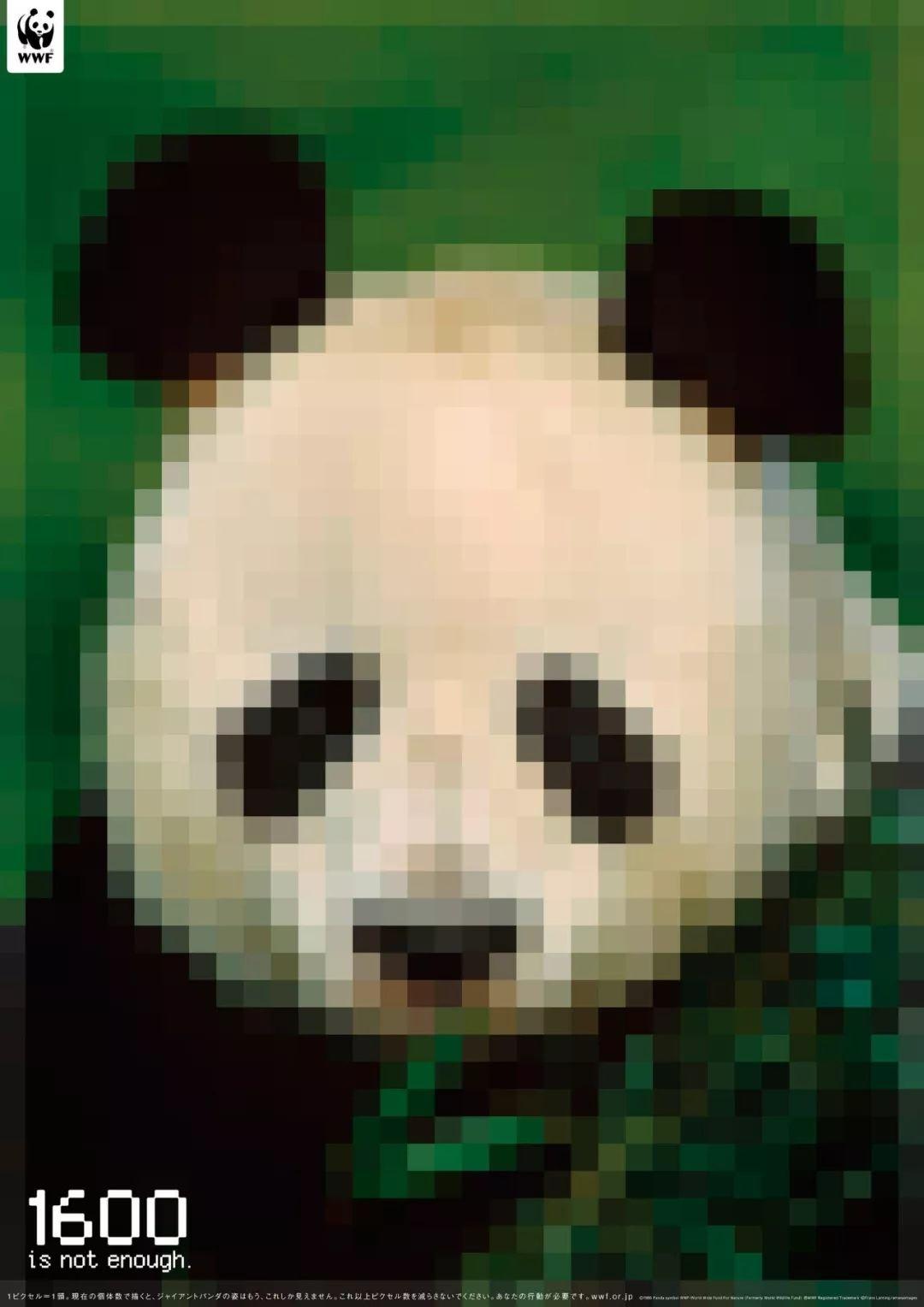 公益海报设计案例赏析 如何凸显濒危动物保护主题