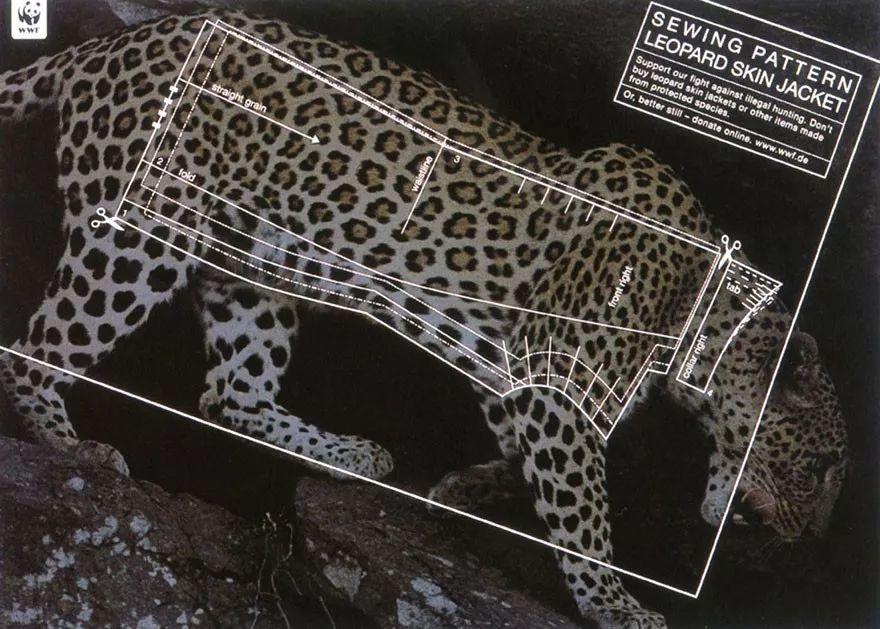 公益海报设计案例赏析 如何凸显野生动物保护主题