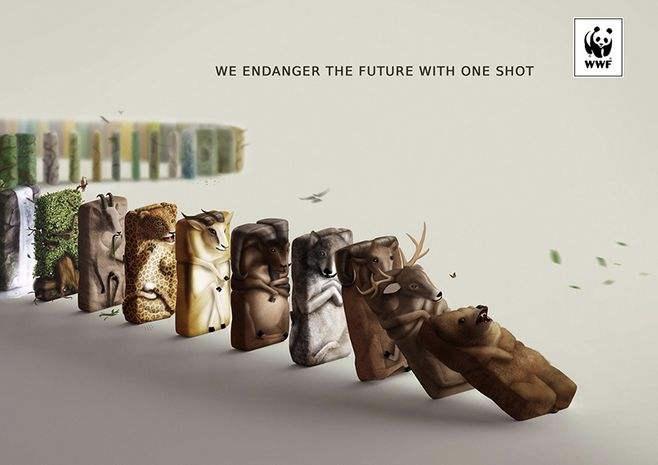 公益海报设计文案  65句走心的动物保护标语