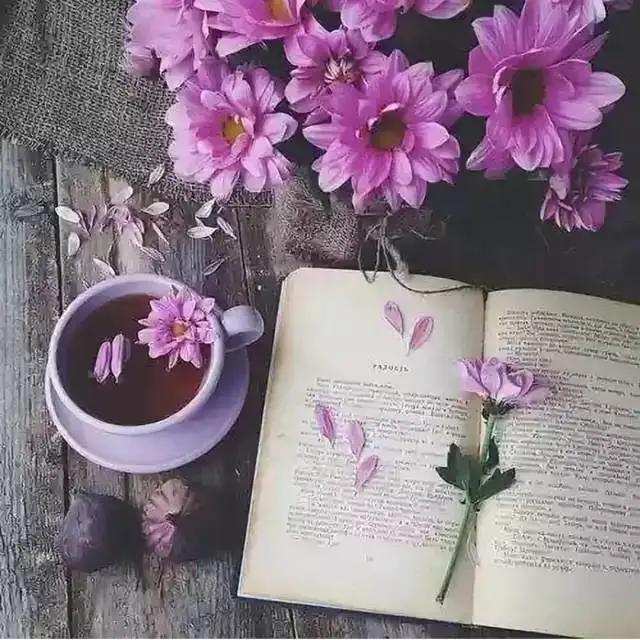 幽美的花草书签设计 自然与书本搭配的美丽世界