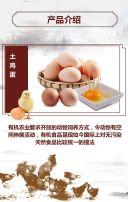 有机农场农家土鸡蛋