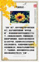 二十四节气立秋企业宣传推广模板