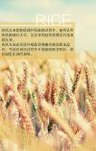 米业、农产品企业、家居、医疗画册、宣传介绍手册
