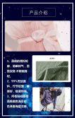 蓝色花朵高端企业宣传h5模板