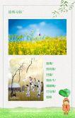 清明节中国传统节日