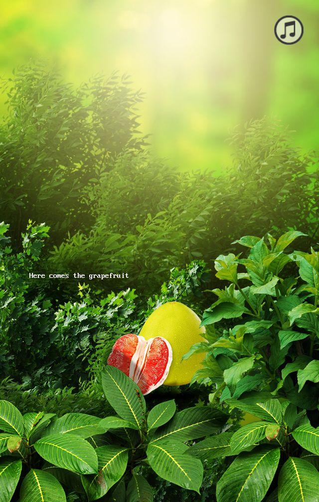 产品推广,柚子,食品等