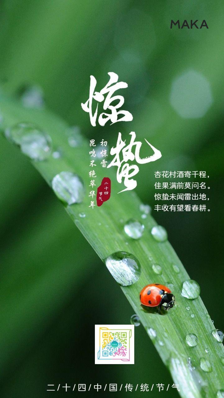 惊蛰二十四节气简约风日签祝福贺卡创意海报