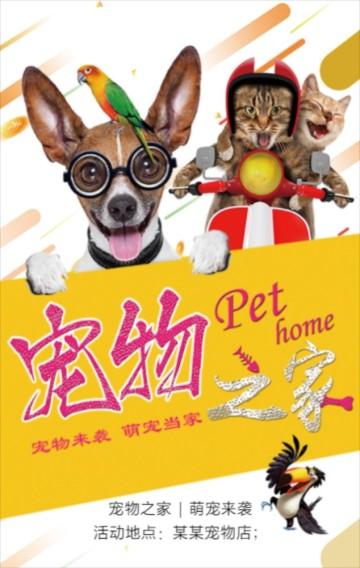 超萌宠物店促销活动模版狗狗美容日用品