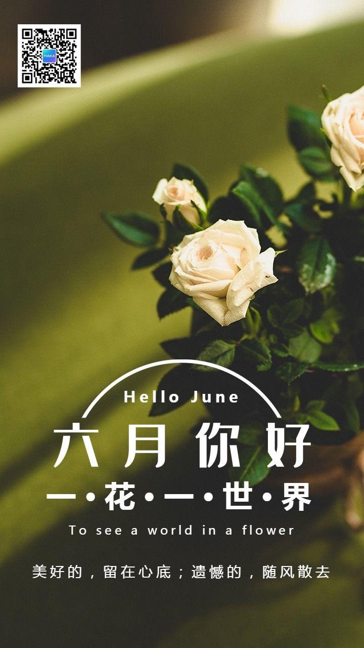六月你好简约文艺心情日签励志每日一签手机版海报