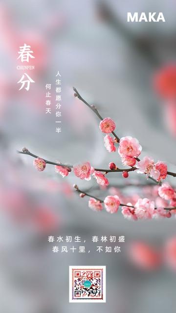 红色春分传统节气宣传海报