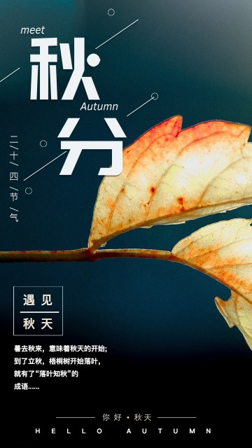 你好秋天·春去秋来二十四节气秋分海报