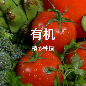 生态农场有机蔬菜宣传推广视频模版