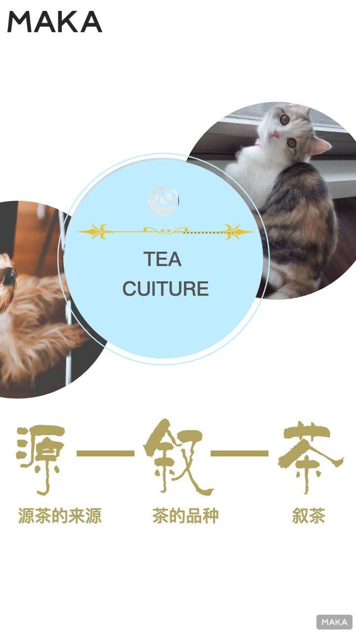 茶文化介绍画册