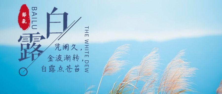 清新文艺风白露节气微信公众号封面大图