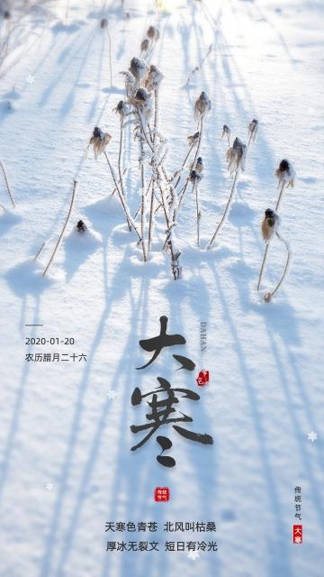 简约清新大气设计风格二十四节气之大寒宣传海报