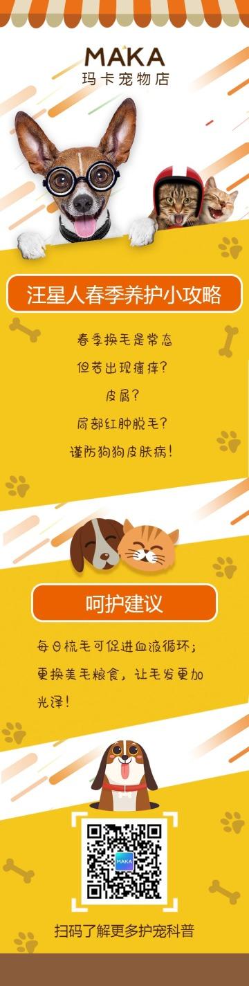 宠物店养护计划宠物护理寄养可爱风促销宣传单页