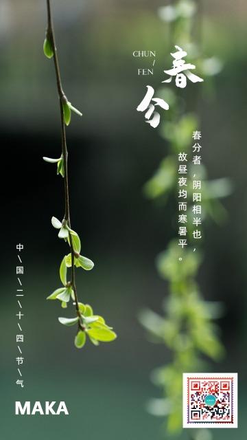 简约大气春分节日宣传海报