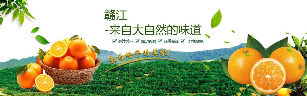 简约大方冬季脐橙热卖促销电商Banner