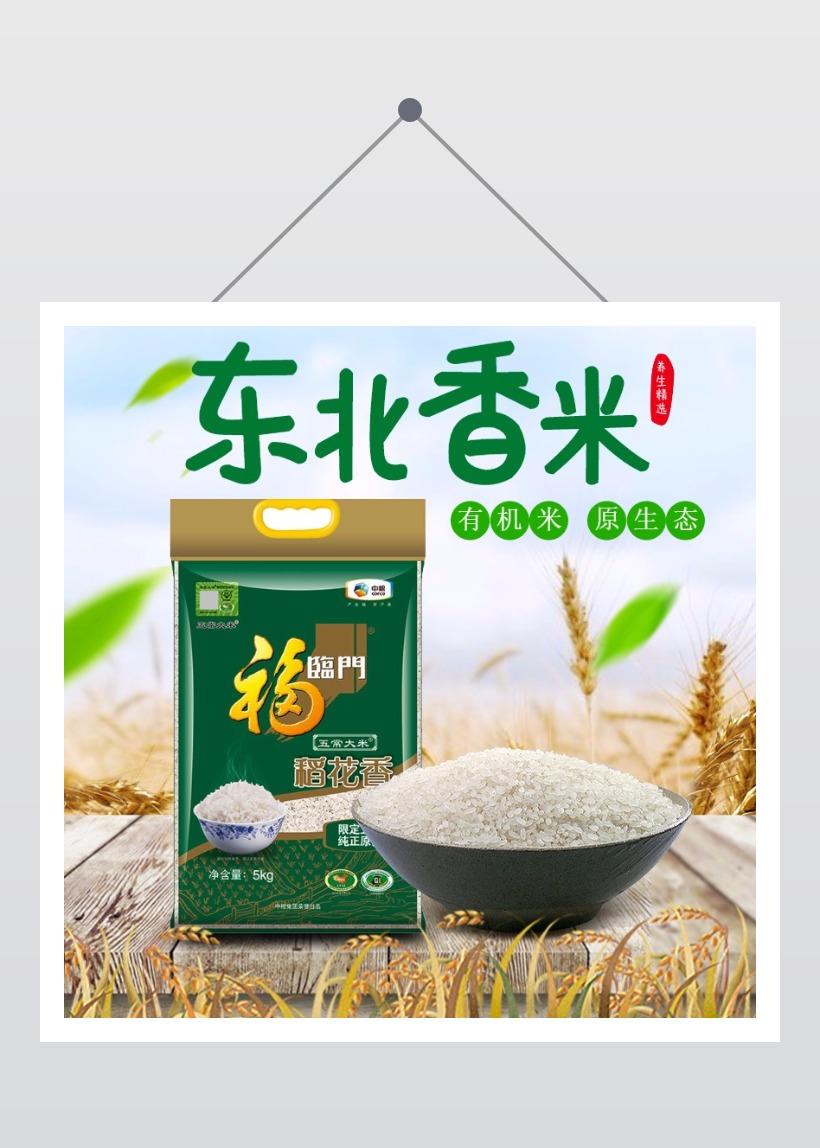 清新简约农业农产品五谷杂粮大米促销电商主图