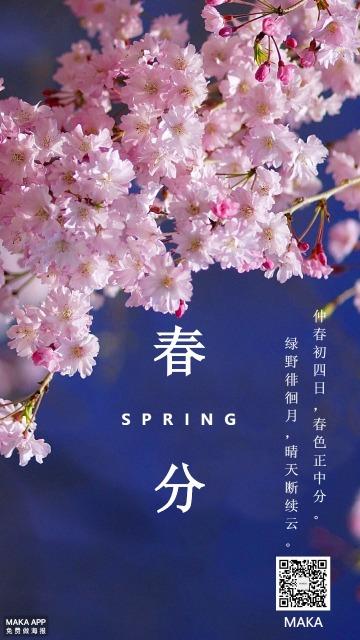 春分季节海报蓝粉色梦幻节气