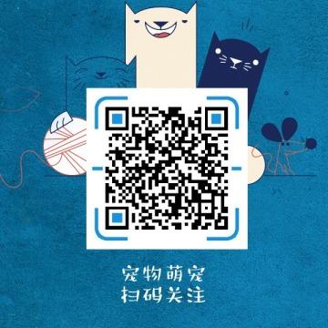 蓝色简约可爱宠物萌宠店铺开业公众号二维码