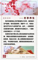 立冬 立冬宣传 二十四节气 冬季促销 立冬贺卡 企业立冬宣传