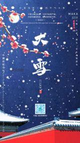 传统二十四节气大雪宣传海报