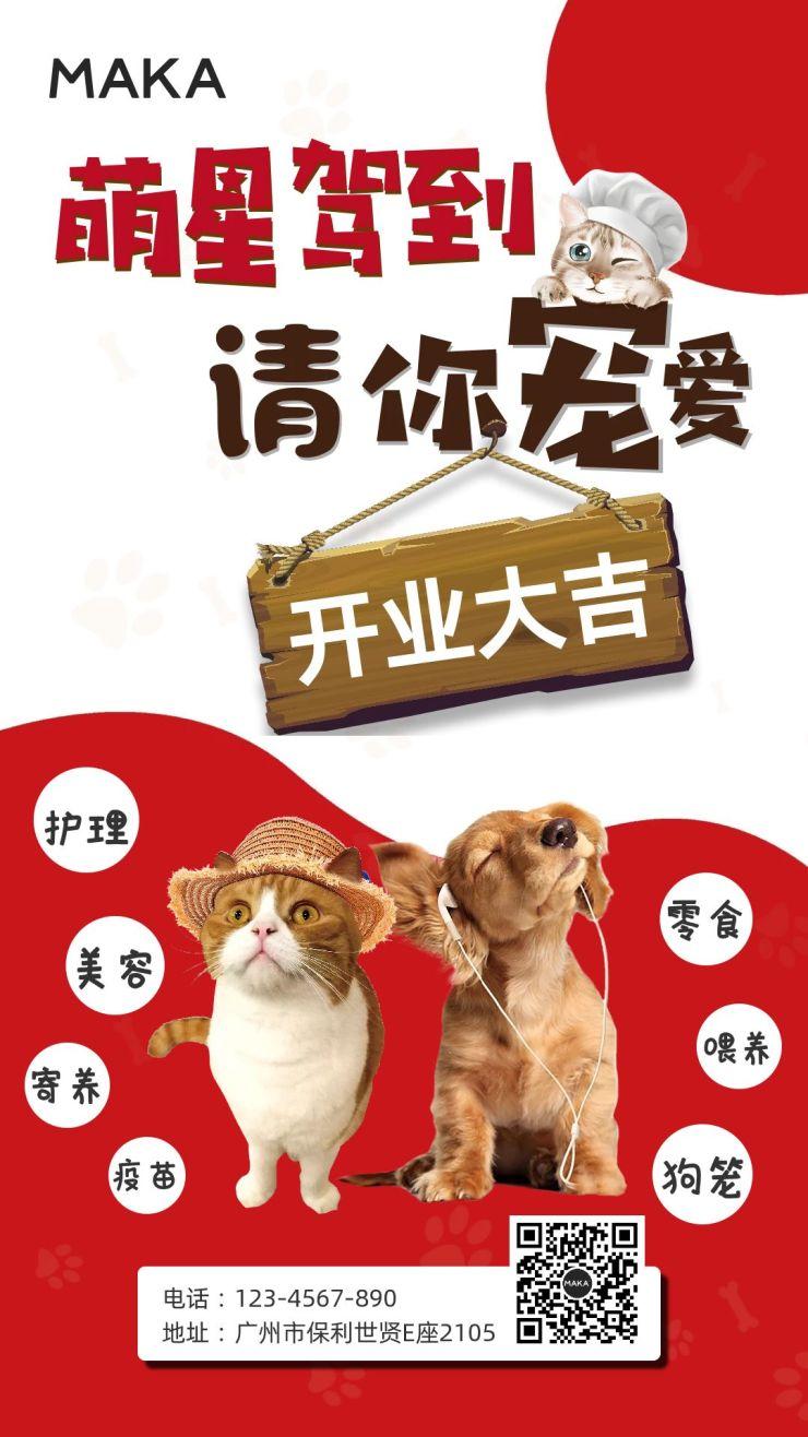 宠物店开业大吉时尚炫酷宣传海报