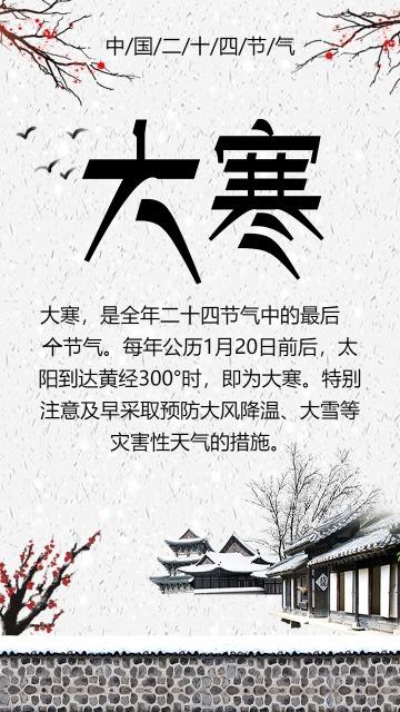 中国风大寒传统节气宣传海报