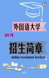 大学、机构、简洁简单大气的招生简章