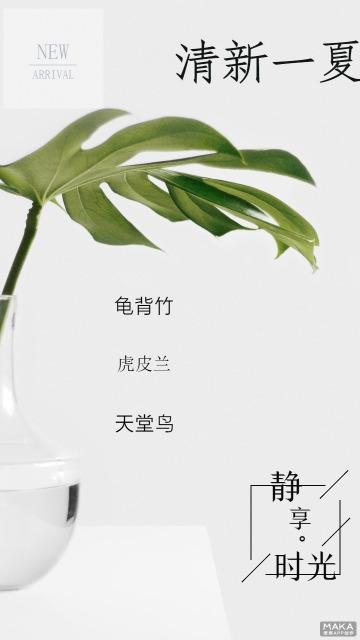 夏日清新绿植优惠宣传