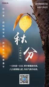 金秋时节简约文艺传统二十四节气秋分日签海报