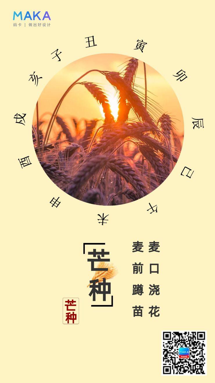 芒种扁平化企业宣传海报