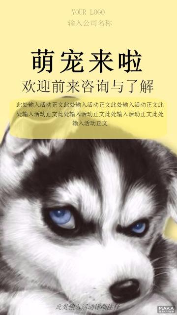 萌宠来啦帅气的一小狗促销海报