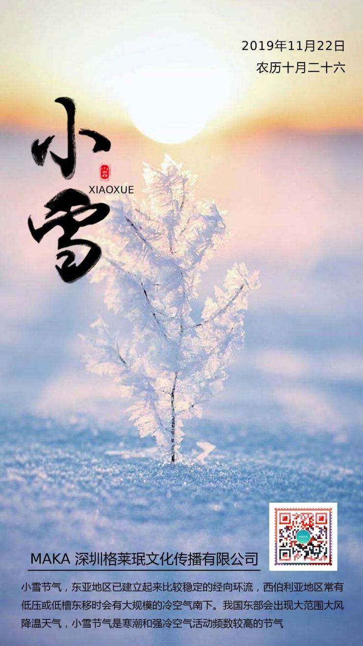 简约清新唯美二十四节气之小雪企业宣传海报