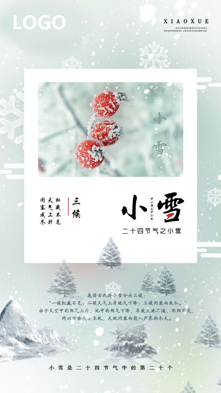 小雪节气/二十四节气/中国传统节气/日签/小雪节气海报