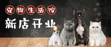 宠物店铺新店开业促销卡通可爱公众号封面头条