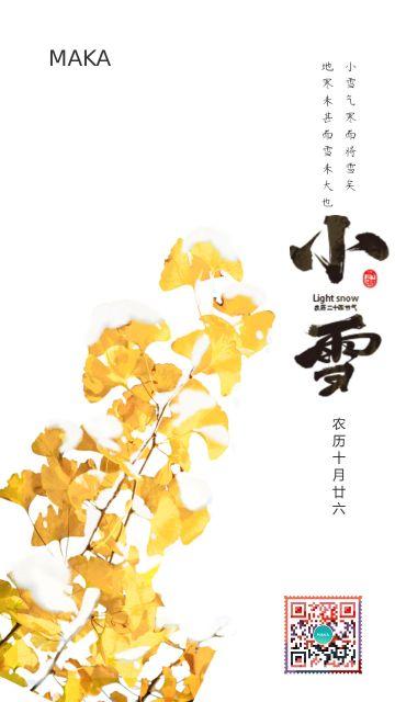 白色清新文艺风小雪传统二十四节气手机宣传海报