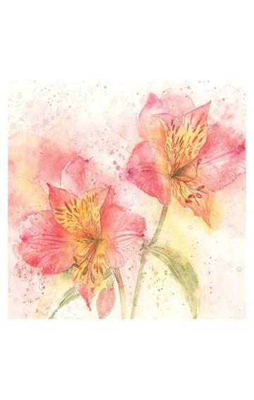 梦妆,发现花朵的美肌奥秘