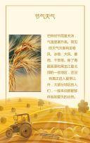 二十四节气之芒种宣传祝福简约创意黄色