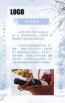 大寒、二十四节气、产品介绍、食品、唯美