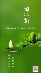 绿色惊蛰二十四节气海报