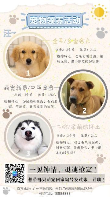 粉色简约宠物生活促销宣传手机海报