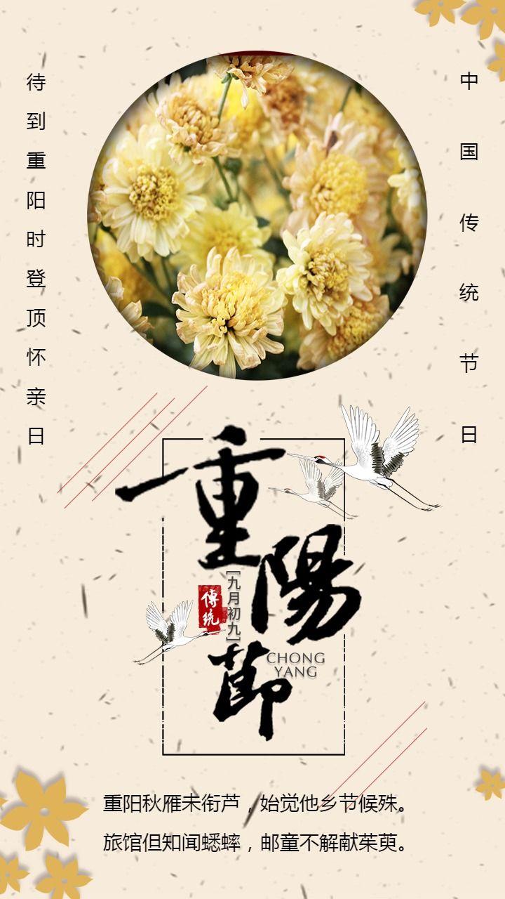 简约清新大气九月九日重阳节海报