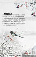 中国传统二十四节气之大雪日签民俗养生推广中医馆宣传推广