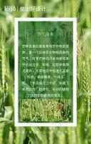 绿色创意芒种节日宣传手机海报