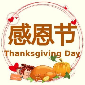 感恩节黄色简约风节日宣传节日科普微信公众号封面小图