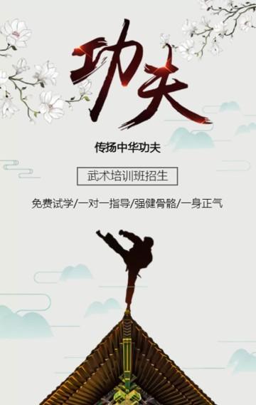 中国风跆拳道班招生武术太极咏春拳培训班招生宣传H5