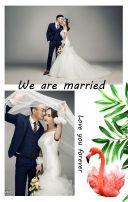 高端轻奢婚礼邀请函火烈鸟主题婚礼请柬森系婚礼邀请函小清新婚礼请帖