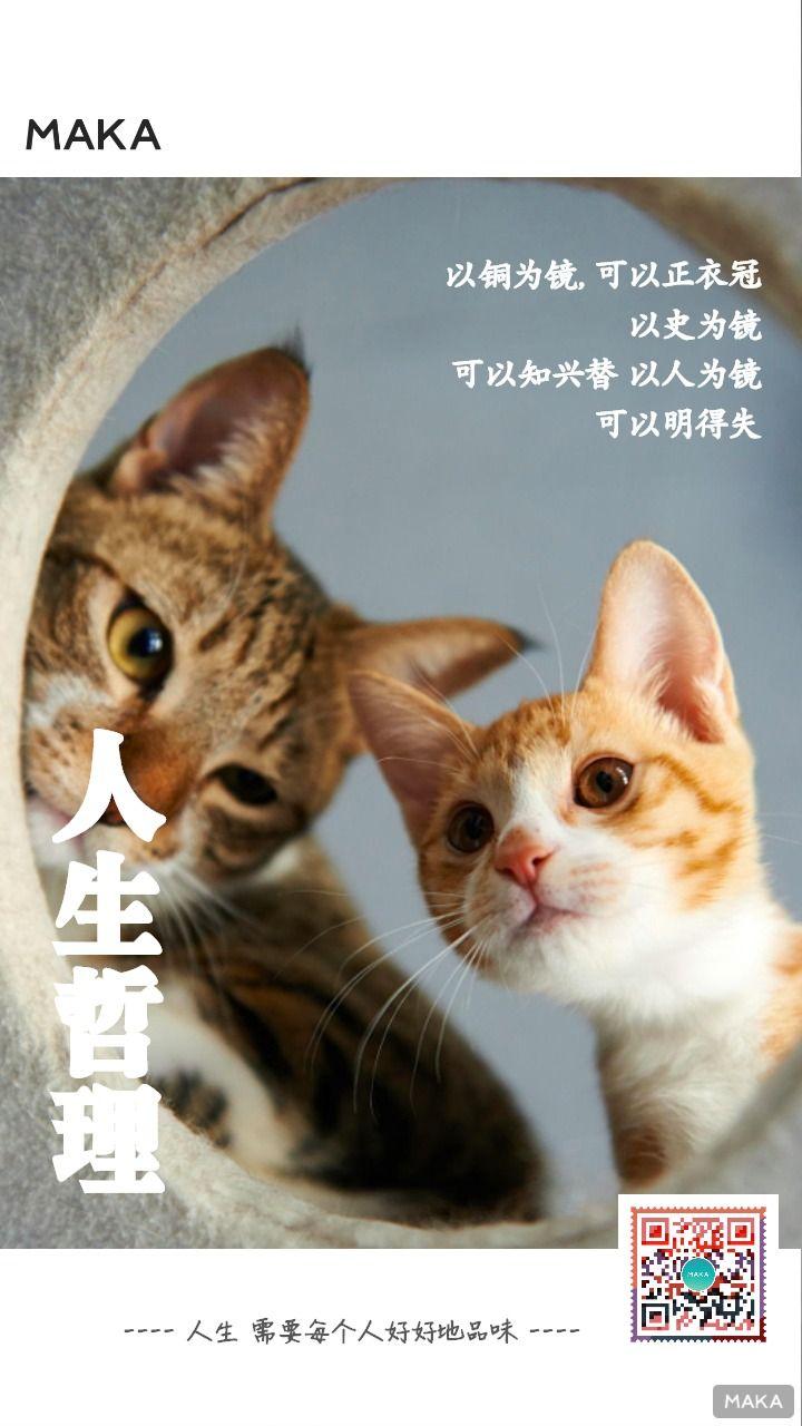 人生哲理杂志封面